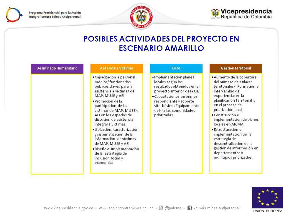 POSIBLES ACTIVIDADES DEL PROYECTO EN ESCENARIO AMARILLO