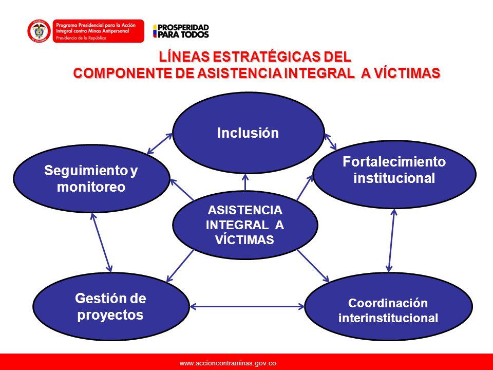 www.accioncontraminas.gov.co ASISTENCIA INTEGRAL A VÍCTIMAS Coordinación interinstitucional Fortalecimiento institucional Seguimiento y monitoreo Gest