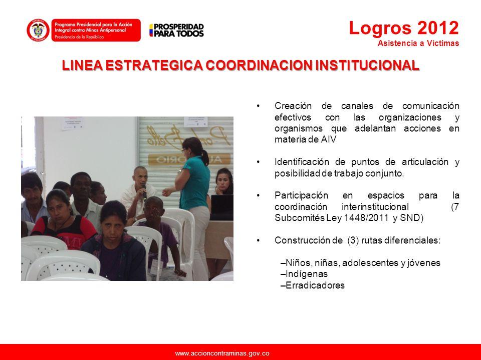 www.accioncontraminas.gov.co LINEA ESTRATEGICA COORDINACION INSTITUCIONAL Creación de canales de comunicación efectivos con las organizaciones y organ