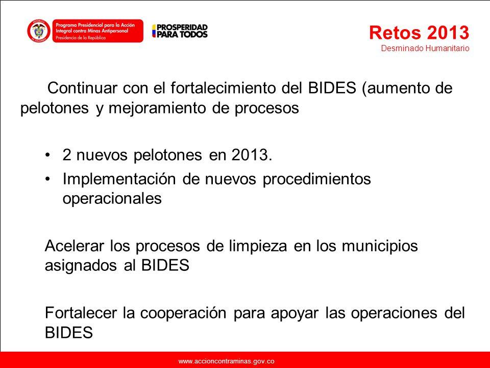 www.accioncontraminas.gov.co Continuar con el fortalecimiento del BIDES (aumento de pelotones y mejoramiento de procesos 2 nuevos pelotones en 2013. I