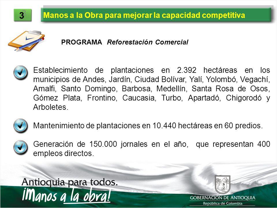 Manos a la Obra para mejorar la capacidad competitiva 3 3 Establecimiento de plantaciones en 2.392 hectáreas en los municipios de Andes, Jardín, Ciuda