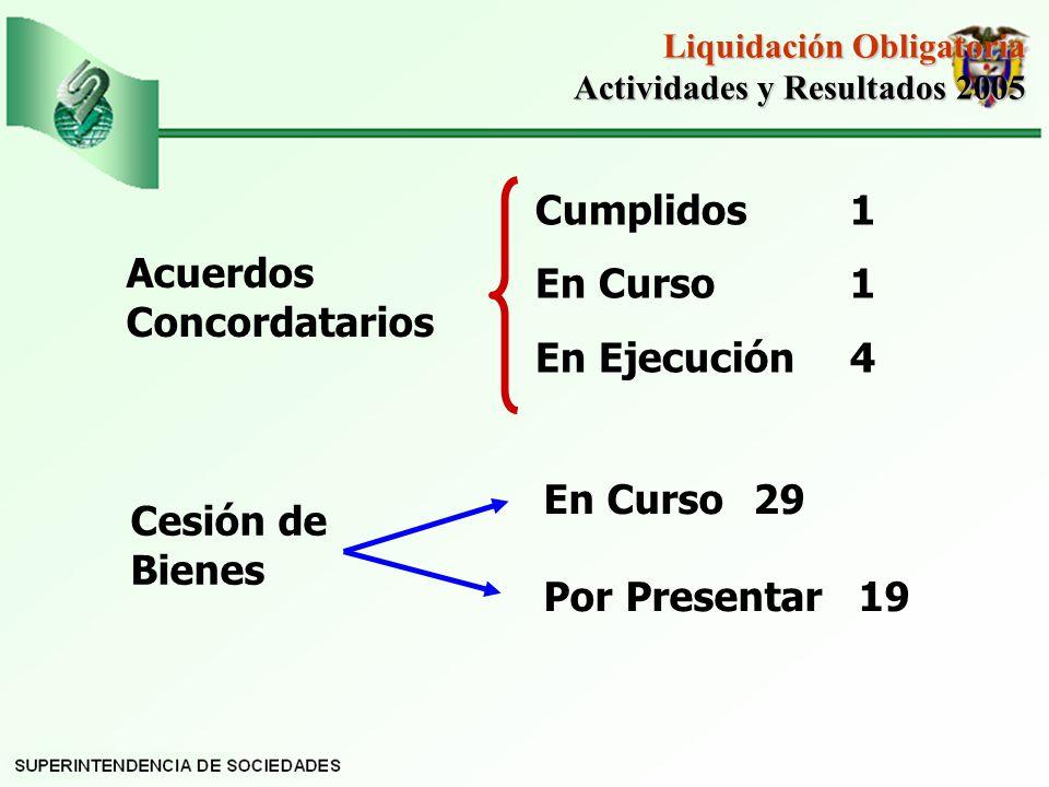 Acuerdos Concordatarios Cumplidos1 En Curso1 En Ejecución4 Liquidación Obligatoria Actividades y Resultados 2005 Actividades y Resultados 2005 Cesión de Bienes En Curso29 Por Presentar19