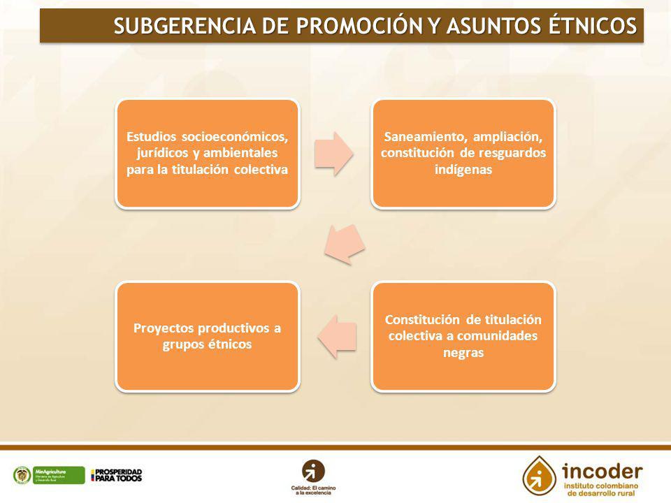 SUBGERENCIA DE PROMOCIÓN Y ASUNTOS ÉTNICOS Estudios socioeconómicos, jurídicos y ambientales para la titulación colectiva Saneamiento, ampliación, con