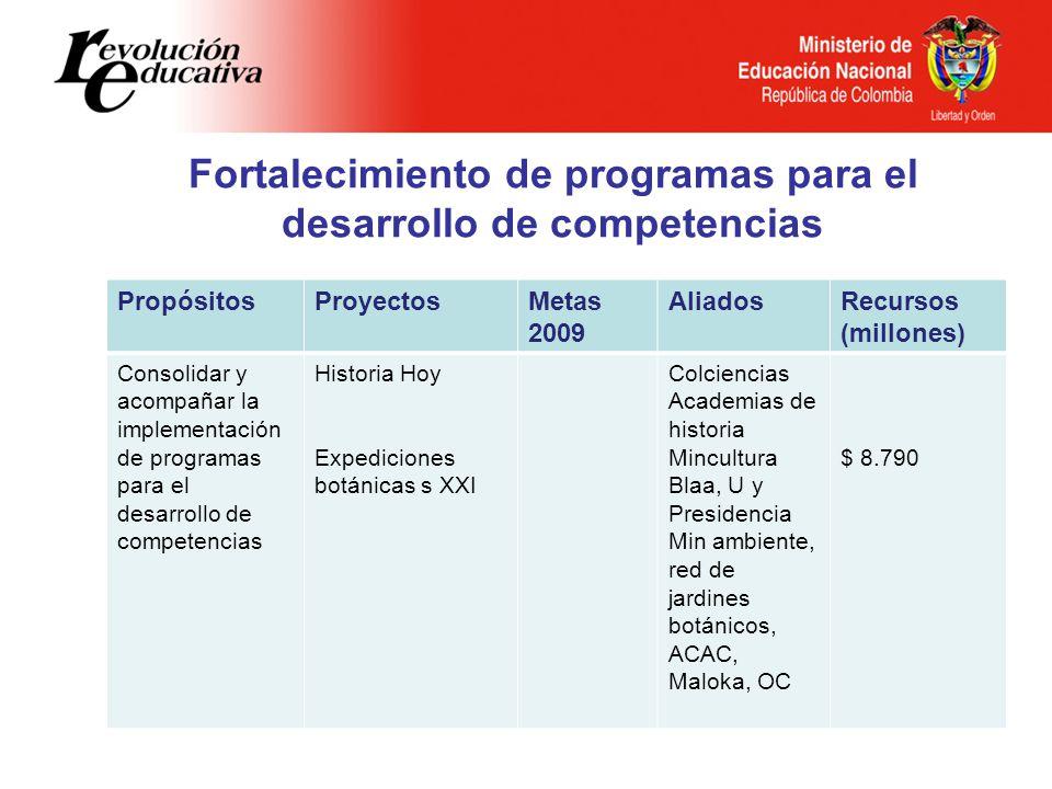 Fortalecimiento de programas para el desarrollo de competencias PropósitosProyectosMetas 2009 AliadosRecursos (millones) Consolidar y acompañar la imp