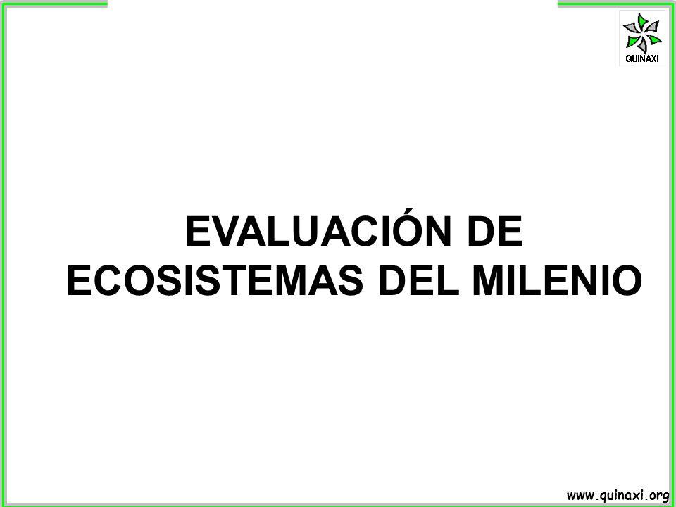 www.quinaxi.org EVALUACIÓN DE ECOSISTEMAS DEL MILENIO