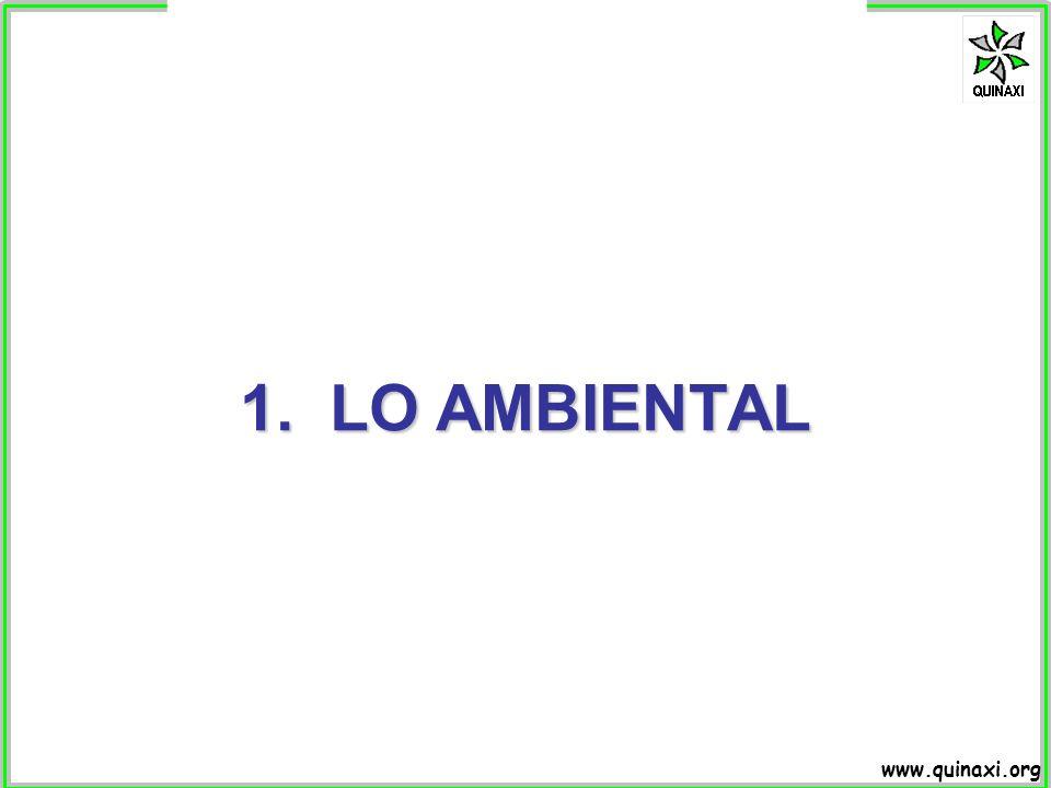 www.quinaxi.org Calidad del sistema Tiempo 1 2 3 Esquema simplificado del concepto de sostenibilidad