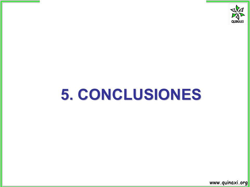 www.quinaxi.org 5. CONCLUSIONES