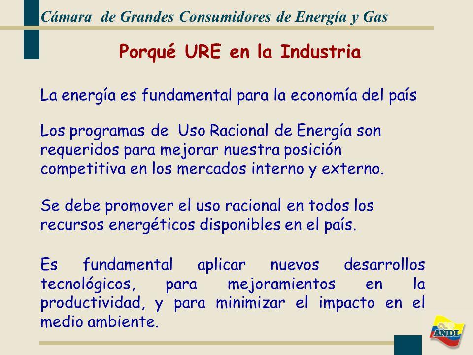 La energía es fundamental para la economía del país Cámara de Grandes Consumidores de Energía y Gas Los programas de Uso Racional de Energía son requeridos para mejorar nuestra posición competitiva en los mercados interno y externo.