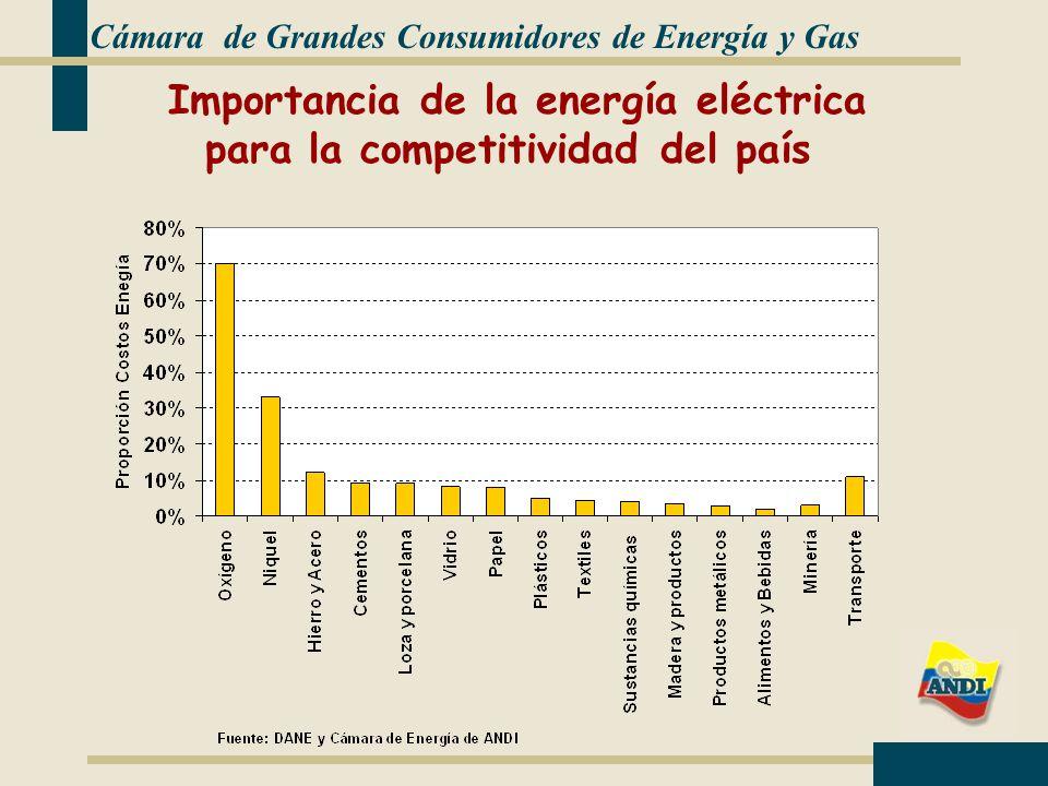 Cámara de Grandes Consumidores de Energía y Gas Importancia de la energía eléctrica para la competitividad del país