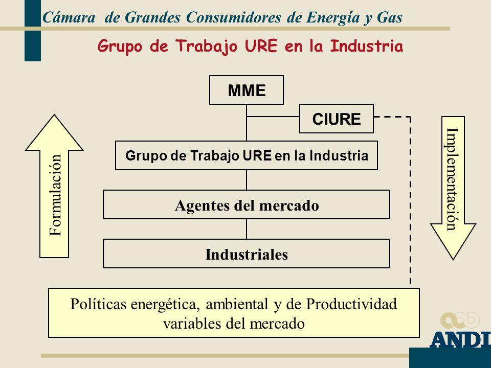 Grupo de Trabajo URE en la Industria MME Grupo de Trabajo URE en la Industria Industriales Formulación Implementación Agentes del mercado Políticas energética, ambiental y de Productividad variables del mercado CIURE Cámara de Grandes Consumidores de Energía y Gas