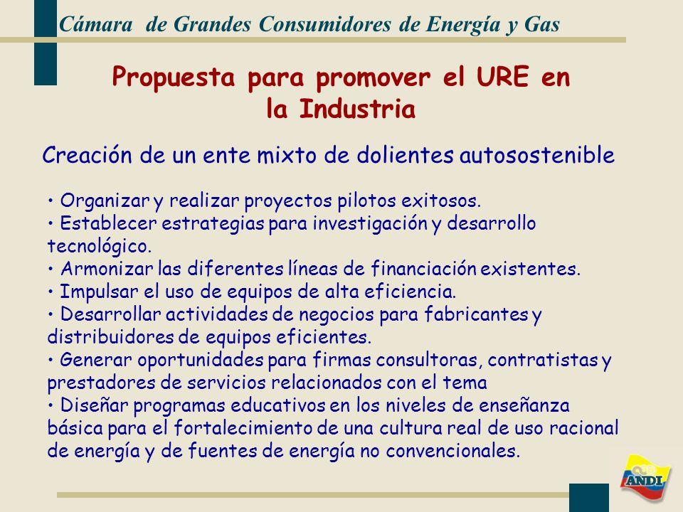 Cámara de Grandes Consumidores de Energía y Gas Creación de un ente mixto de dolientes autosostenible Organizar y realizar proyectos pilotos exitosos.