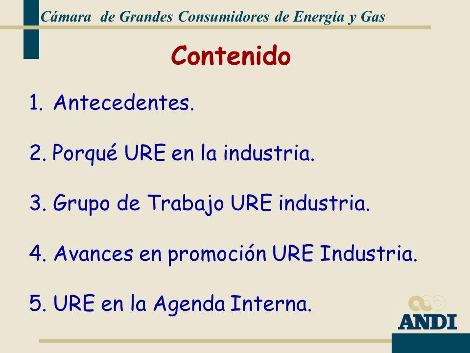 Cámara de Grandes Consumidores de Energía y Gas 1.Antecedentes.