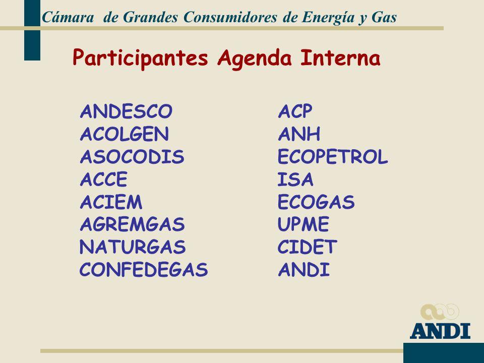 Cámara de Grandes Consumidores de Energía y Gas ANDESCO ACOLGEN ASOCODIS ACCE ACIEM AGREMGAS NATURGAS CONFEDEGAS Participantes Agenda Interna ACP ANH ECOPETROL ISA ECOGAS UPME CIDET ANDI