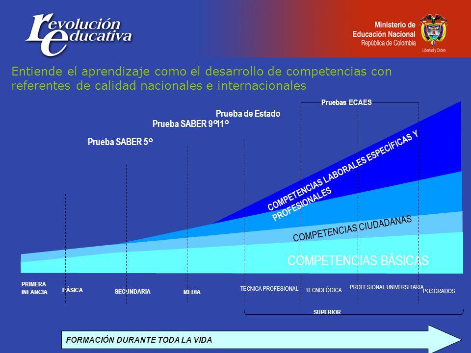 FORMACIÓN DURANTE TODA LA VIDA BÁSICA SECUNDARIA MEDIA TECNICA PROFESIONAL TECNOLÓGICA PROFESIONAL UNIVERSITARIA COMPETENCIAS BÁSICAS Prueba SABER 5° Prueba SABER 9° Prueba de Estado 11° Pruebas ECAES COMPETENCIAS LABORALES ESPECÍFICAS Y PROFESIONALES SUPERIOR PRIMERA INFANCIA POSGRADOS Entiende el aprendizaje como el desarrollo de competencias con referentes de calidad nacionales e internacionales COMPETENCIAS CIUDADANAS