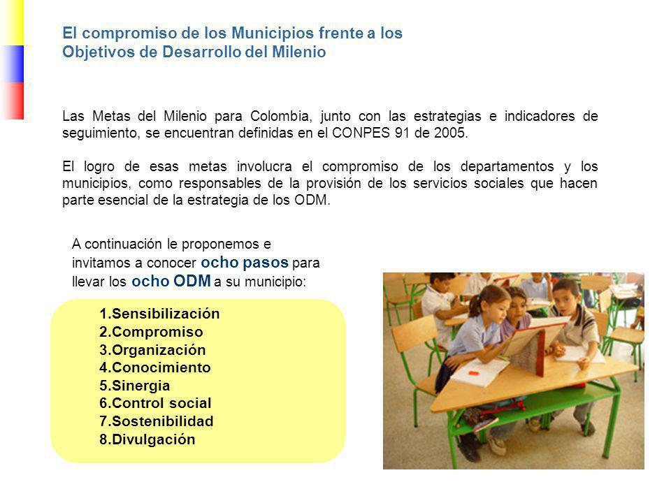 Las Metas del Milenio para Colombia, junto con las estrategias e indicadores de seguimiento, se encuentran definidas en el CONPES 91 de 2005. El logro