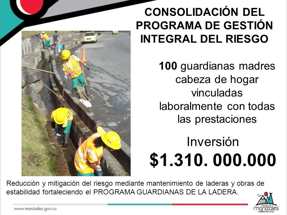 CONSOLIDACIÓN DEL PROGRAMA DE GESTIÓN INTEGRAL DEL RIESGO Reducción y mitigación del riesgo mediante mantenimiento de laderas y obras de estabilidad f