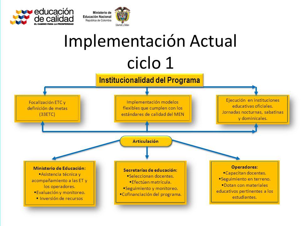 Implementación Actual ciclo 1 Focalización ETC y definición de metas (33ETC) Implementación modelos flexibles que cumplen con los estándares de calida