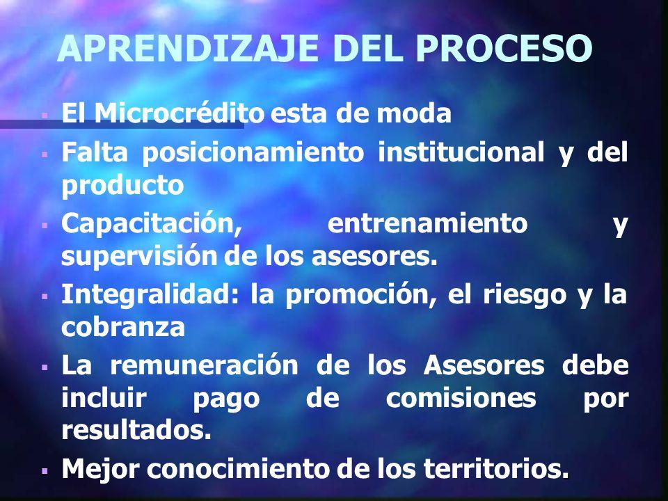 APRENDIZAJE DEL PROCESO El Microcrédito esta de moda Falta posicionamiento institucional y del producto Capacitación, entrenamiento y supervisión de los asesores.