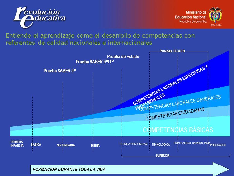 FORMACIÓN DURANTE TODA LA VIDA BÁSICA SECUNDARIA MEDIA TECNICA PROFESIONAL TECNOLÓGICA PROFESIONAL UNIVERSITARIA COMPETENCIAS BÁSICAS Prueba SABER 5° Prueba SABER 9° Prueba de Estado 11° Pruebas ECAES COMPETENCIAS LABORALES ESPECÍFICAS Y PROFESIONALES COMPETENCIAS LABORALES GENERALES SUPERIOR PRIMERA INFANCIA POSGRADOS Entiende el aprendizaje como el desarrollo de competencias con referentes de calidad nacionales e internacionales COMPETENCIAS CIUDADANAS