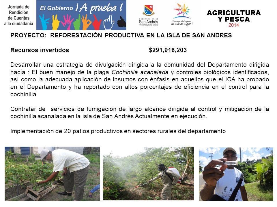 AGRICULTURA Y PESCA 2014 PROYECTO: REFORESTACIÒN PRODUCTIVA EN LA ISLA DE SAN ANDRES Recursos invertidos$291,916,203 Desarrollar una estrategia de div