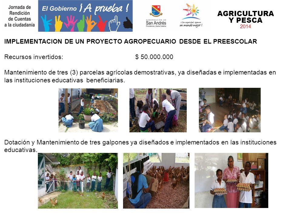 AGRICULTURA Y PESCA 2014 IMPLEMENTACION DE UN PROYECTO AGROPECUARIO DESDE EL PREESCOLAR Recursos invertidos: $ 50.000.000 Mantenimiento de tres (3) pa