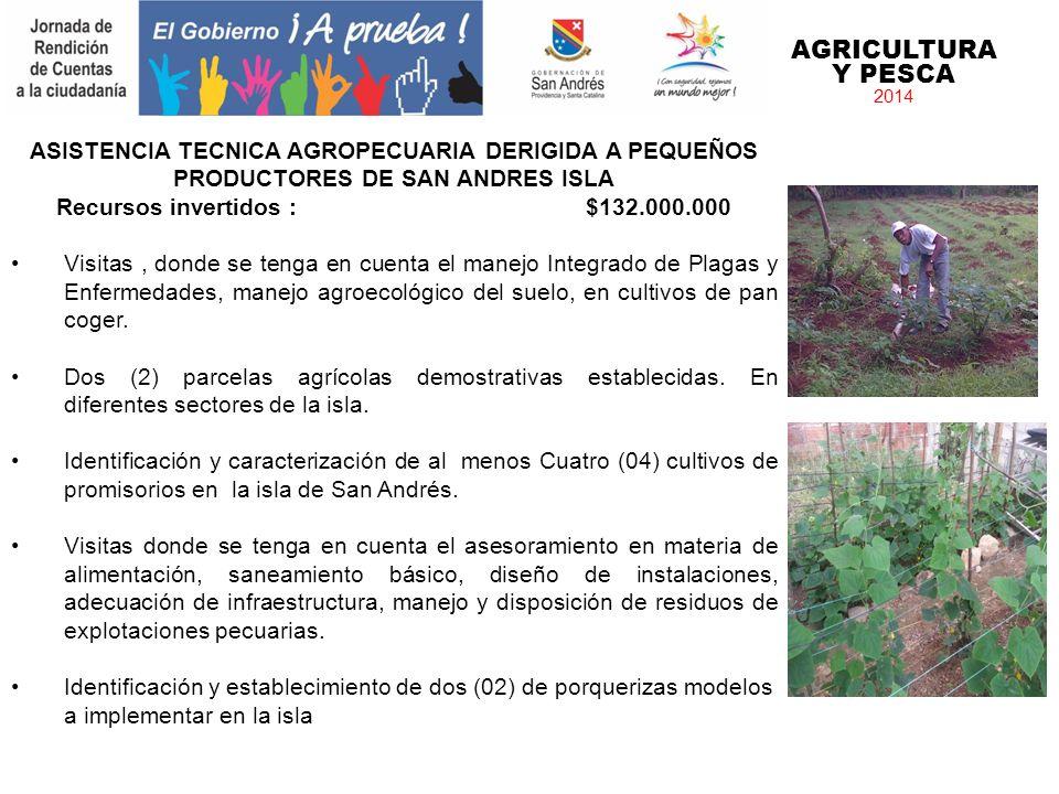 AGRICULTURA Y PESCA 2014 ASISTENCIA TECNICA AGROPECUARIA DERIGIDA A PEQUEÑOS PRODUCTORES DE SAN ANDRES ISLA Recursos invertidos : $132.000.000 Visitas