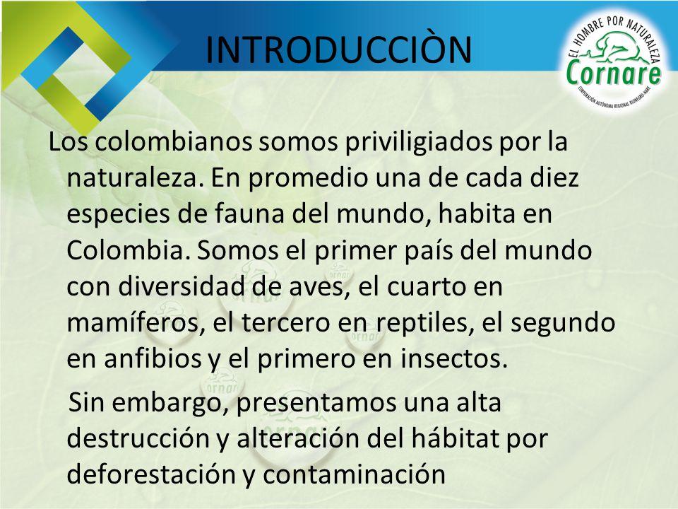 INTRODUCCIÒN Los colombianos somos priviligiados por la naturaleza. En promedio una de cada diez especies de fauna del mundo, habita en Colombia. Somo