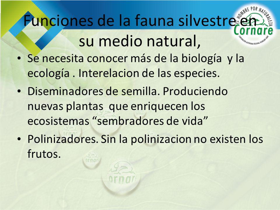 Funciones de la fauna silvestre en su medio natural, Se necesita conocer más de la biología y la ecología. Interelacion de las especies. Diseminadores