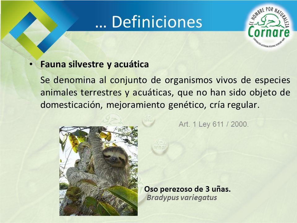 Fauna silvestre y acuática Se denomina al conjunto de organismos vivos de especies animales terrestres y acuáticas, que no han sido objeto de domestic