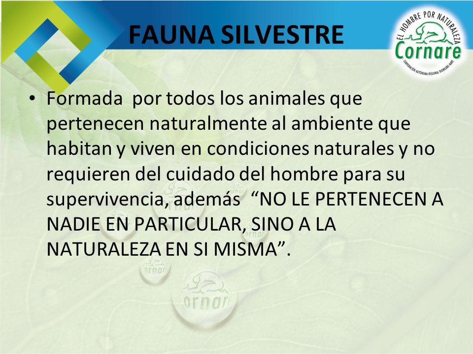 FAUNA SILVESTRE Formada por todos los animales que pertenecen naturalmente al ambiente que habitan y viven en condiciones naturales y no requieren del