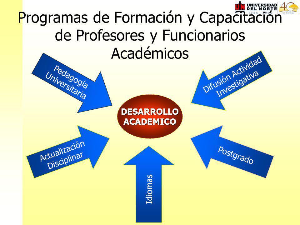 Programas de Formación y Capacitación de Profesores y Funcionarios Académicos Actualización Disciplinar Idiomas Pedagogía Universitaria Postgrado DESARROLLOACADEMICO Difusión Actividad Investigativa