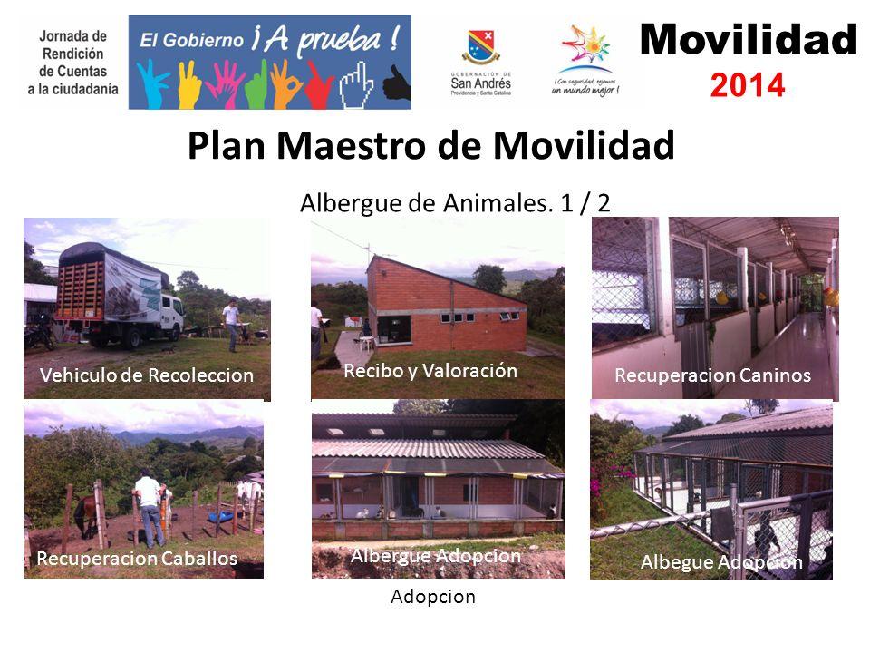 Movilidad 2014 Albergue de Animales.