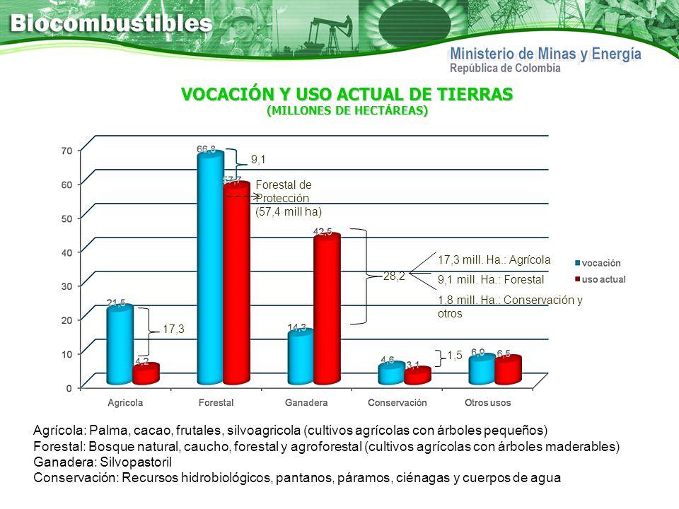 VOCACIÓN Y USO ACTUAL DE TIERRAS (MILLONES DE HECTÁREAS) Agrícola: Palma, cacao, frutales, silvoagricola (cultivos agrícolas con árboles pequeños) For