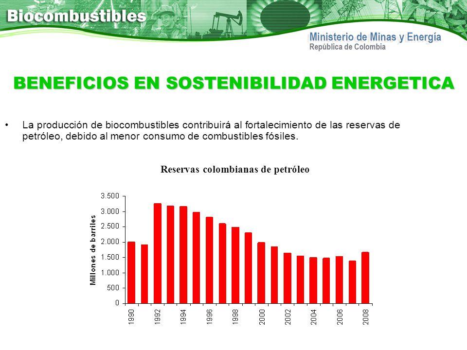 BENEFICIOS EN SOSTENIBILIDAD ENERGETICA La producción de biocombustibles contribuirá al fortalecimiento de las reservas de petróleo, debido al menor c