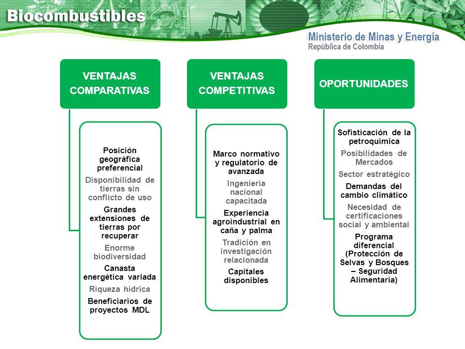 VENTAJAS COMPARATIVAS Posición geográfica preferencial Disponibilidad de tierras sin conflicto de uso Grandes extensiones de tierras por recuperar Eno
