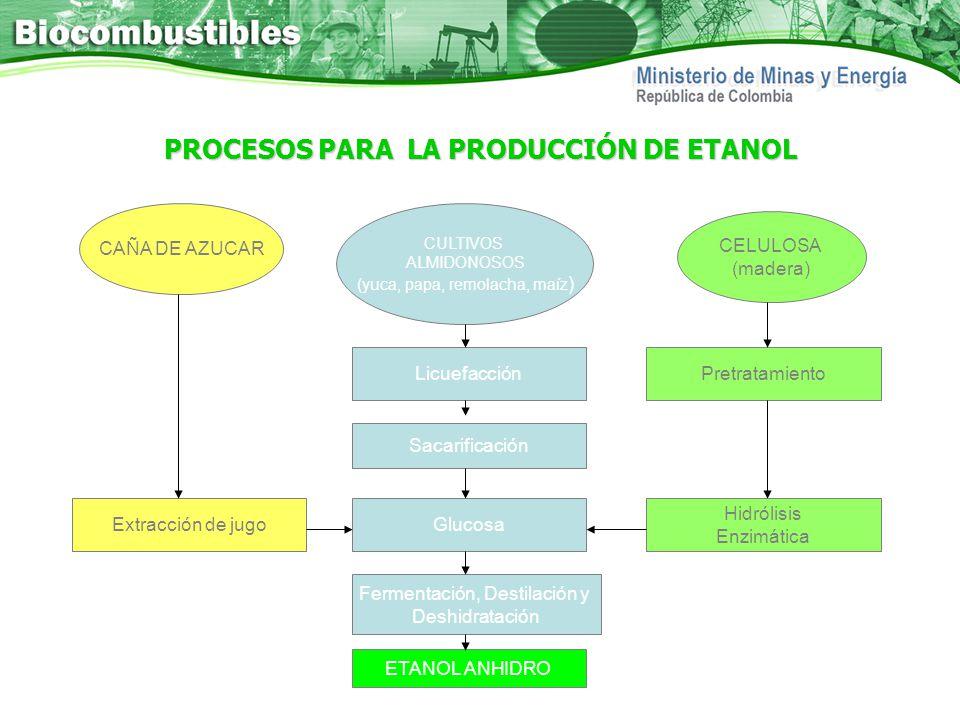 Propender por la diversificación de la canasta energética a través del uso de biocombustibles, con criterios de: Abastecimiento energético Sostenibilidad ambiental, La verdadera Revolución social que el país necesita.