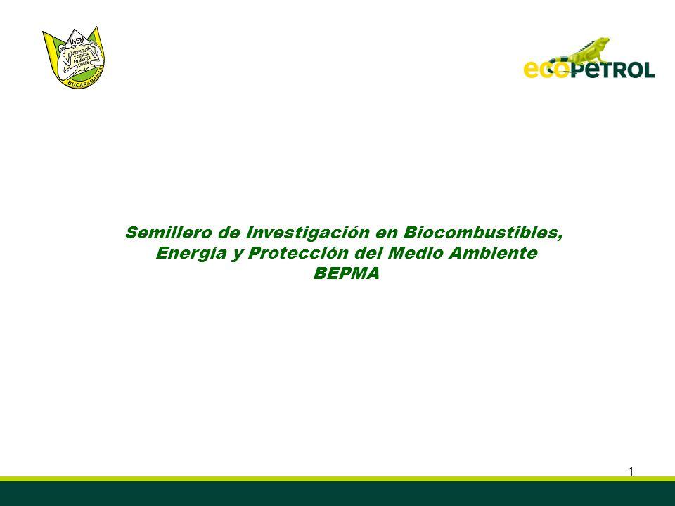 1 Semillero de Investigación en Biocombustibles, Energía y Protección del Medio Ambiente BEPMA