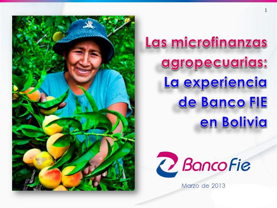 El contexto del financiamiento agropecuario en Bolivia La participación de la cartera agropecuaria del sistema financiero se redujo en 44% en 8 años, de 8,6% el 2004 a 4,8% el 2011.