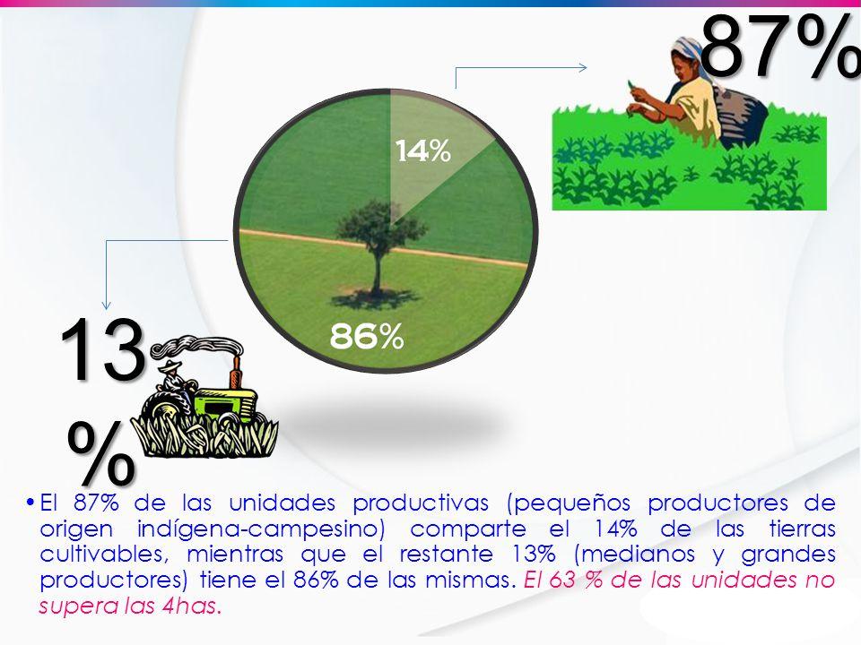 El 87% de las unidades productivas (pequeños productores de origen indígena-campesino) comparte el 14% de las tierras cultivables, mientras que el res