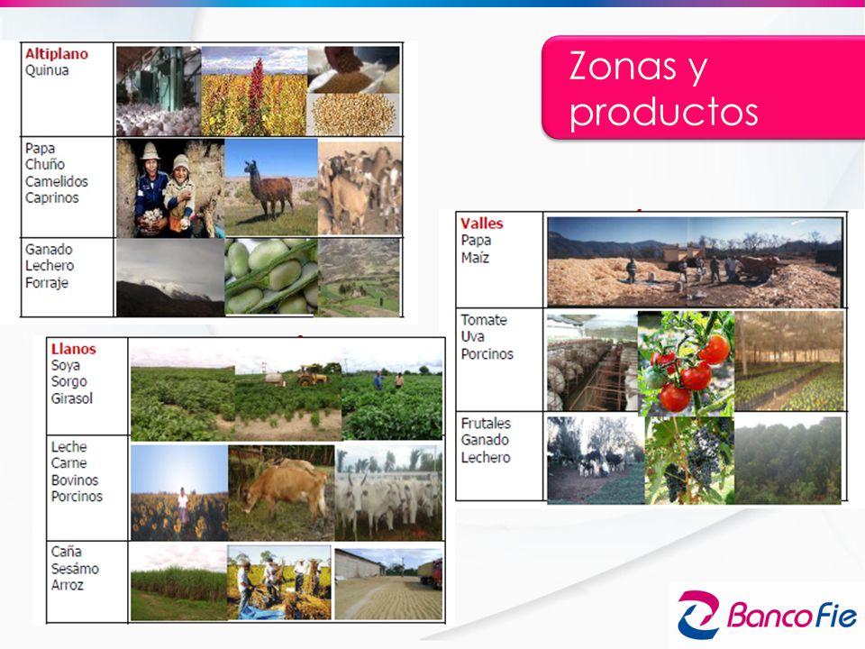 Zonas y productos