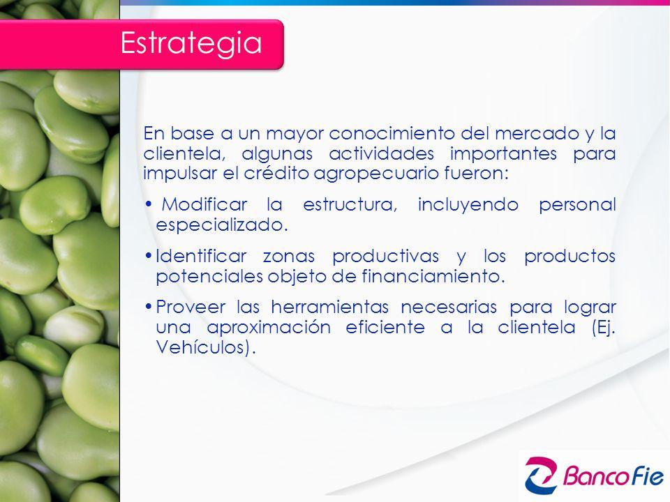 En base a un mayor conocimiento del mercado y la clientela, algunas actividades importantes para impulsar el crédito agropecuario fueron: Modificar la