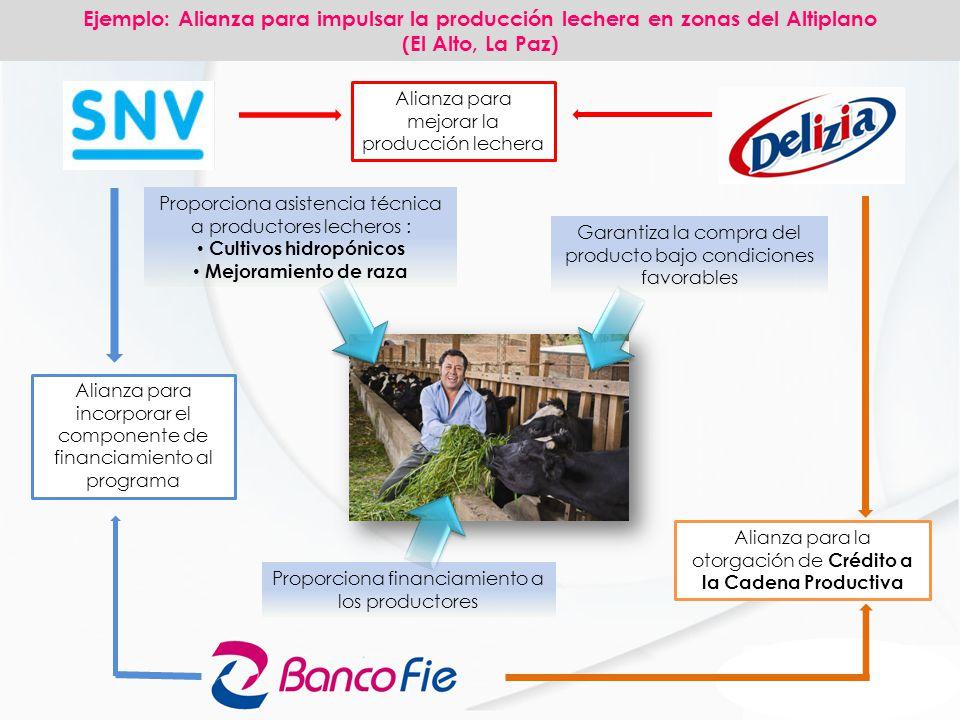 Alianza para la otorgación de Crédito a la Cadena Productiva Alianza para mejorar la producción lechera Alianza para incorporar el componente de finan