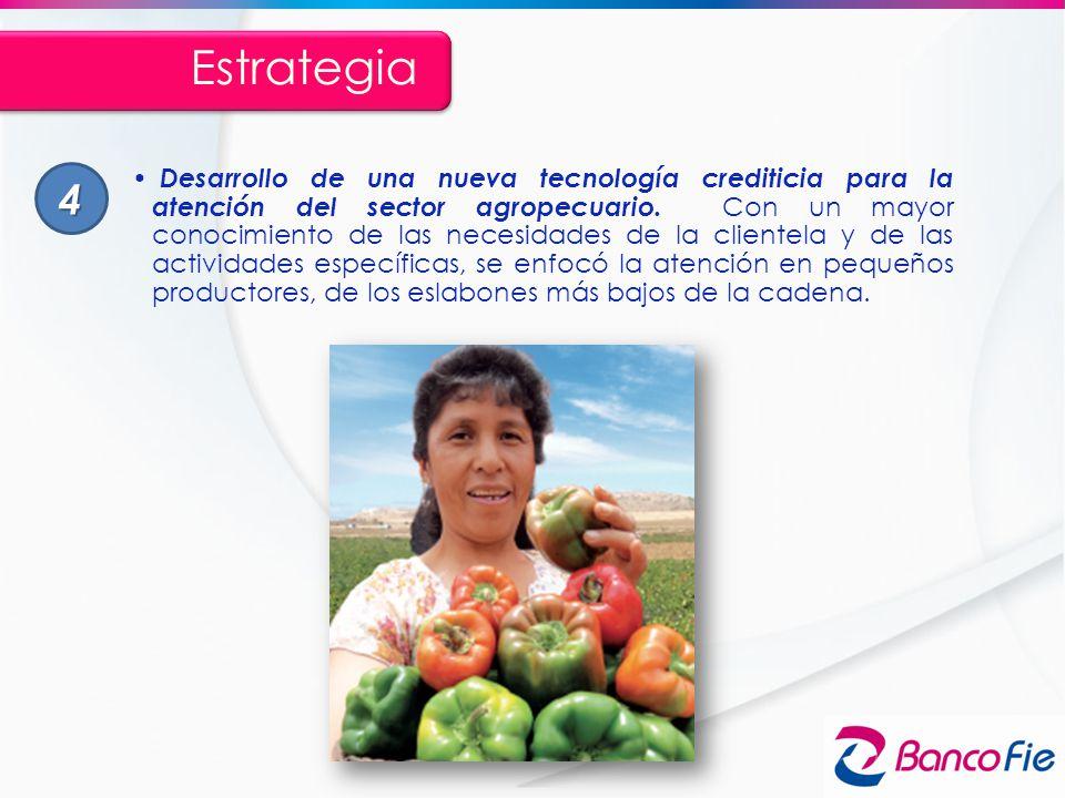 Desarrollo de una nueva tecnología crediticia para la atención del sector agropecuario. Con un mayor conocimiento de las necesidades de la clientela y