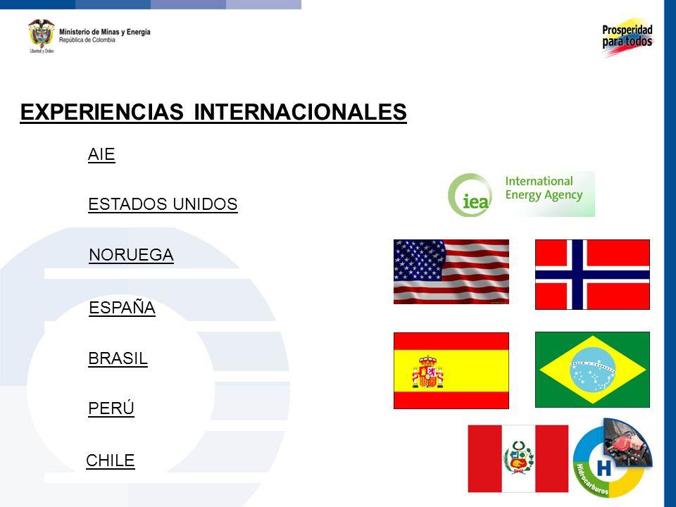LINEAMIENTOS GENERALES 50 Proceso previo de Declaración de Interés.