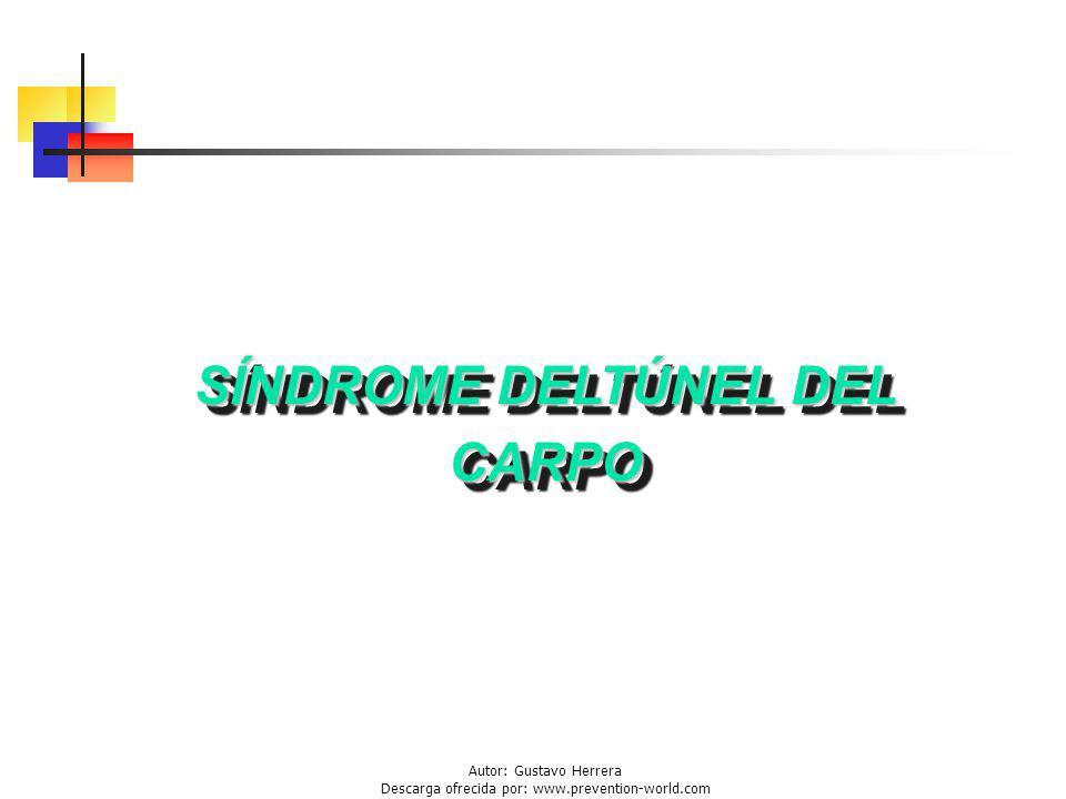 Autor: Gustavo Herrera Descarga ofrecida por: www.prevention-world.com SÍNDROME DELTÚNEL DEL CARPO