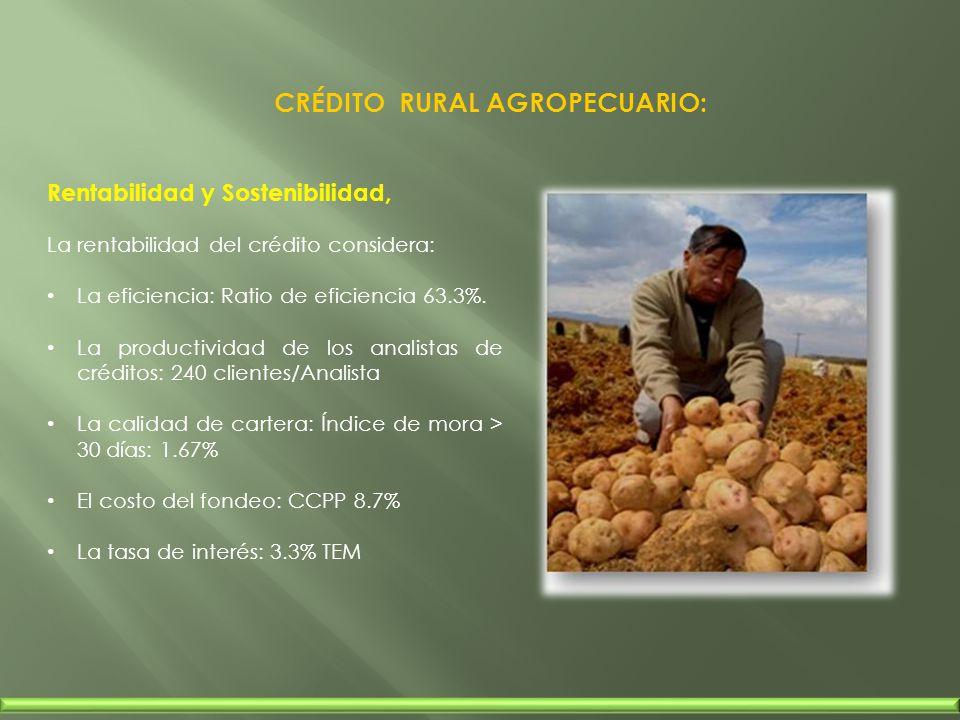 Rentabilidad y Sostenibilidad, La rentabilidad del crédito considera: La eficiencia: Ratio de eficiencia 63.3%. La productividad de los analistas de c