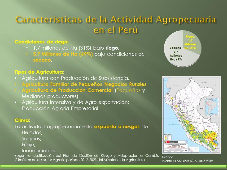 Sobre la estrategia Institucional y el proceso de la tecnología del crédito rural agropecuario :.