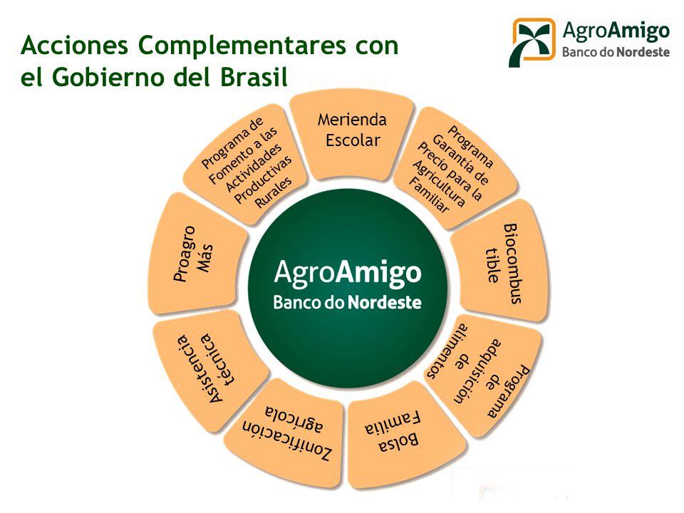 Acciones Complementares con el Gobierno del Brasil Proagro Más Merienda Escolar Programa Garantía de Precio para la Agricultura Familiar Biocombus tible Programa de adquisición de alimentos Bolsa Familia Zonificación agrícola Asistencia técnica Programa de Fomento a las Actividades Productivas Rurales