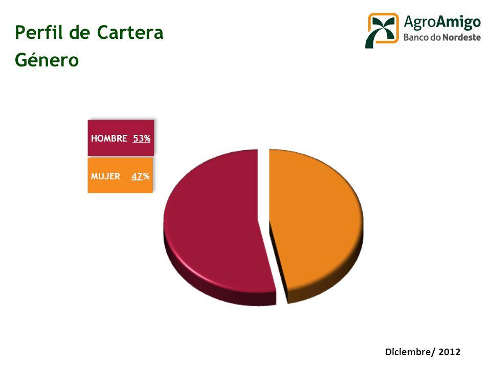 Perfil de Cartera Género Diciembre/ 2012