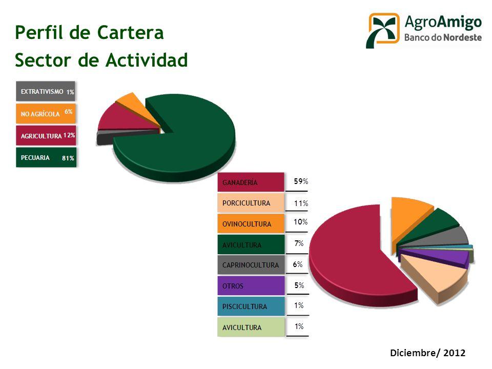 Perfil de Cartera Sector de Actividad Diciembre/ 2012
